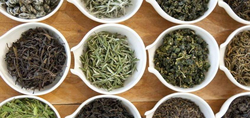 top 10 loại trà lá ngon nhất hiện nay